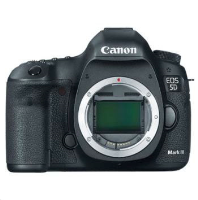 5D Mark III (Only Body)